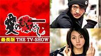 愛のむきだし【最長版 THE TV-SHOW】 (全10話)